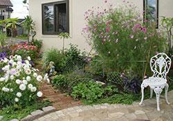 2009/08/31 『夢のお庭』