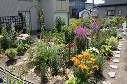 ひろちゃん夢の庭園